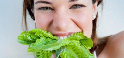 Los Mejores Tratamientos Naturales Para la Caida del Cabello