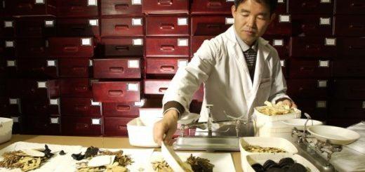 medicina-china-y-los-diferentes-tipos-de-hierbas-chinas-para-la-caida-del-cabello